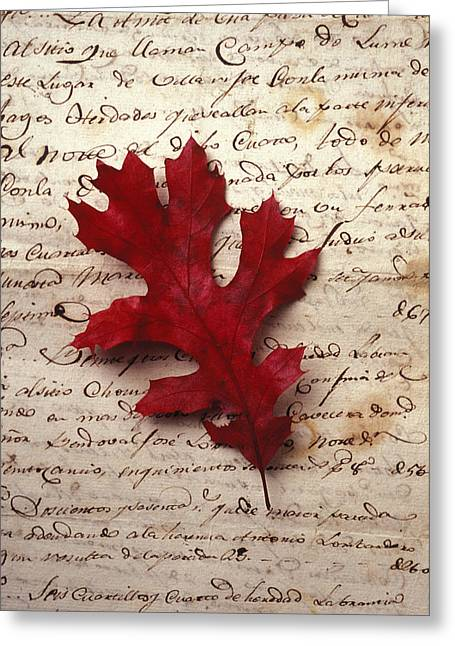 Leaves Greeting Cards - Leaf on letter Greeting Card by Garry Gay