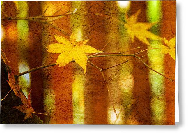 Fall Yellow Greeting Cards - Leaf Zen A Greeting Card by Rebecca Cozart