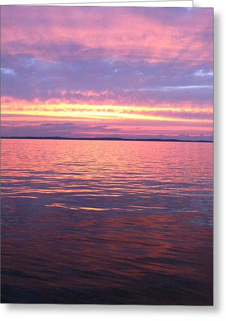 Lake Mendota Greeting Cards - Leafy witness Greeting Card by Teresa Rogers