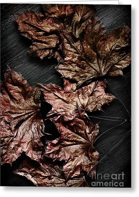 Leaves Photographs Greeting Cards - Leaves Greeting Card by HD Connelly