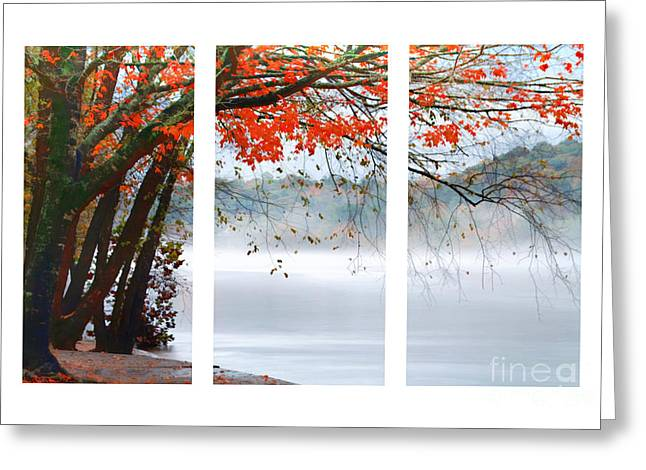 Leaves Of Red Greeting Card by Darren Fisher