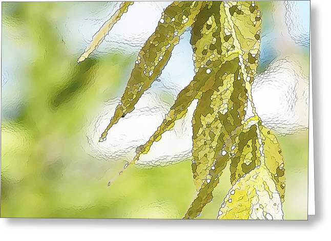 Leaves Touching Water Greeting Card by Artist and Photographer Laura Wrede