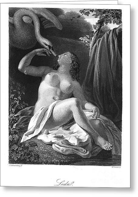 Leda And The Swan Greeting Card by Granger