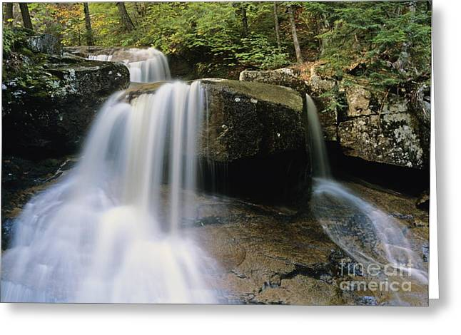 Ledge Photographs Greeting Cards - Ledge Brook - White Mountains New Hampshire USA Greeting Card by Erin Paul Donovan