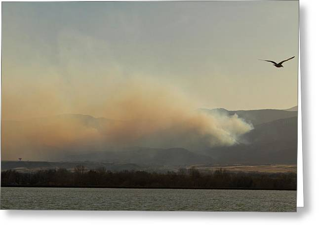 Striking Images Greeting Cards - Lefthand Canyon Wildfire Across the Lake View Greeting Card by James BO  Insogna