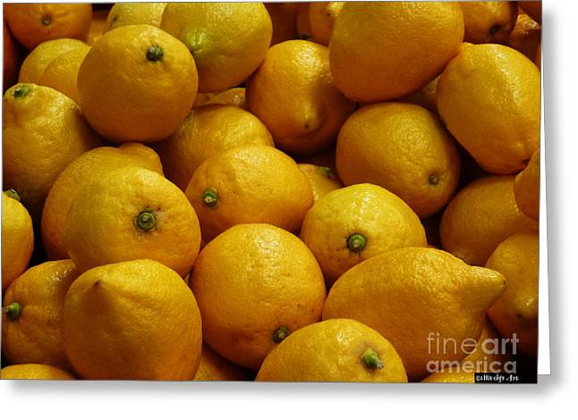Lemons Greeting Card by Methune Hively