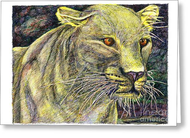 Golden Leopard Greeting Cards - Leopard Stared Greeting Card by Richard Stratford