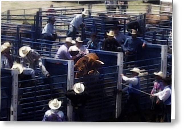 Pbr Greeting Cards - Let Me Outta Here Greeting Card by Amanda Eberly-Kudamik