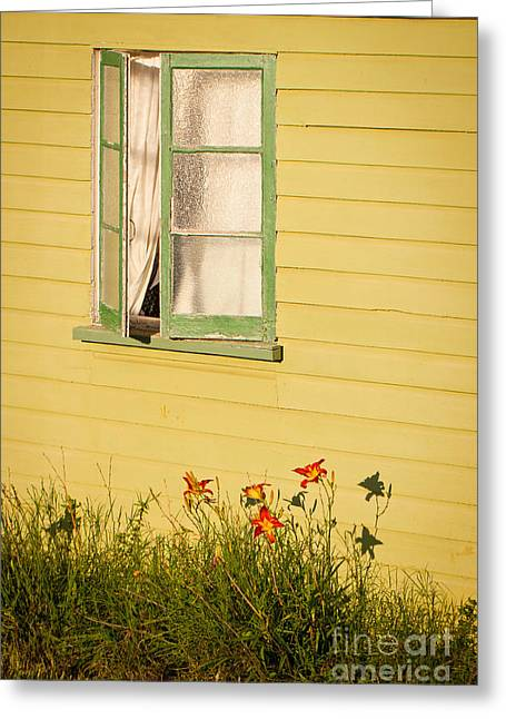 Queensland Greeting Cards - Let summer in Greeting Card by Johan Larson