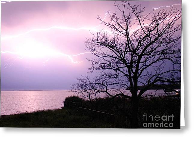 Setting Framed Prints Greeting Cards - Let There Be Light-ning Greeting Card by Scenesational Photos