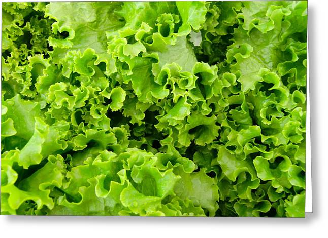 Lettuce Greeting Cards - Let Us Be Green Greeting Card by Richard Mansfield