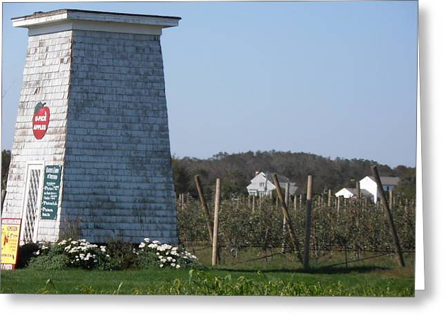 North Fork Greeting Cards - Lets Go Pick Some Apples Greeting Card by Kimberly Perry