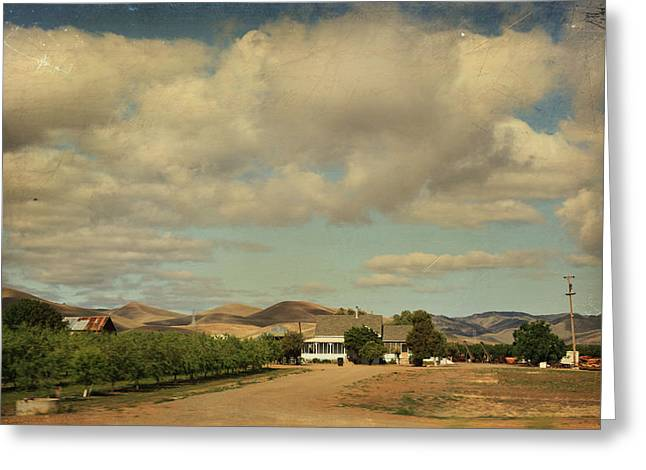 Ranch Home Greeting Cards - Lets Run Through the Orchard Greeting Card by Laurie Search