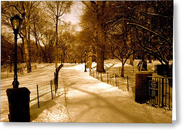 Central Park Winter Greeting Cards - Lets Take a Walk Greeting Card by Ariane Moshayedi