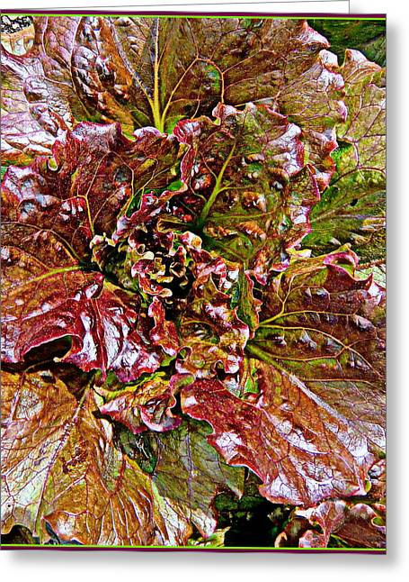 Abstract Digital Paintings Greeting Cards - Lettuce Greeting Card by Mindy Newman