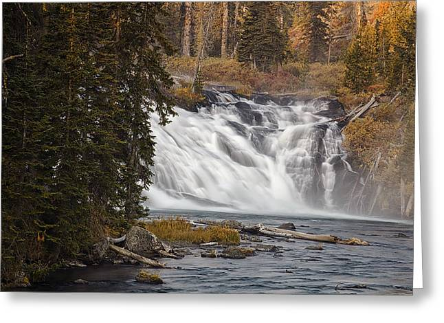 Whitewater Greeting Cards - Lewis Falls - Yellowstone Greeting Card by Andrew Soundarajan