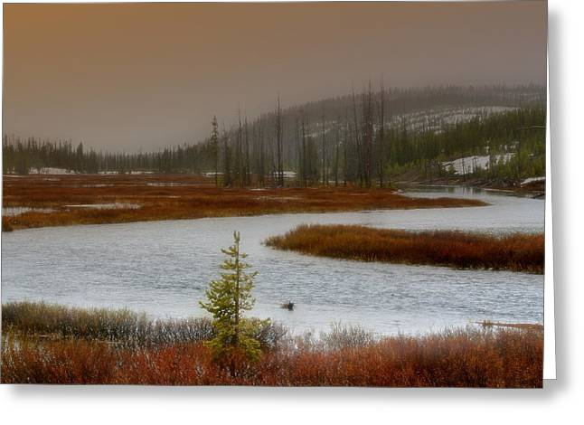 Lewis River - Yellowstone National Park Greeting Card by Ellen Heaverlo