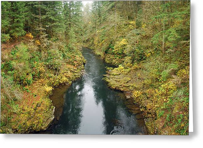 Lewis River Near Moulton Falls Greeting Card by Twenty Two North Photography