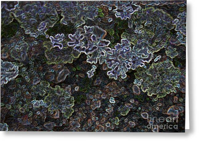 Lichen Image Greeting Cards - Lichen Fracticality Greeting Card by Ron Bissett