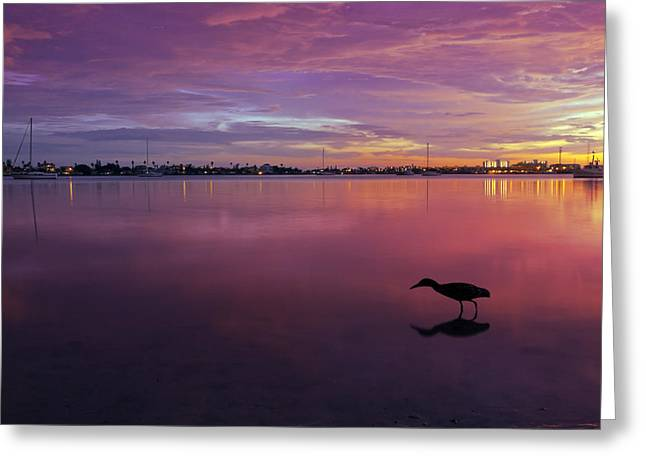 Panoramic Ocean Digital Greeting Cards - Life after Sunset Greeting Card by Melanie Viola