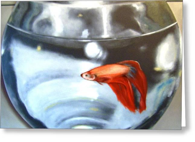 Betta Greeting Cards - Life in a Fishbowl Greeting Card by Michael Biernaski