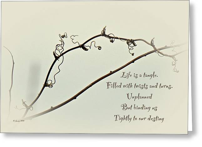 Mother Nature Greeting Cards - Life is a Tangle Greeting Card by Mother Nature