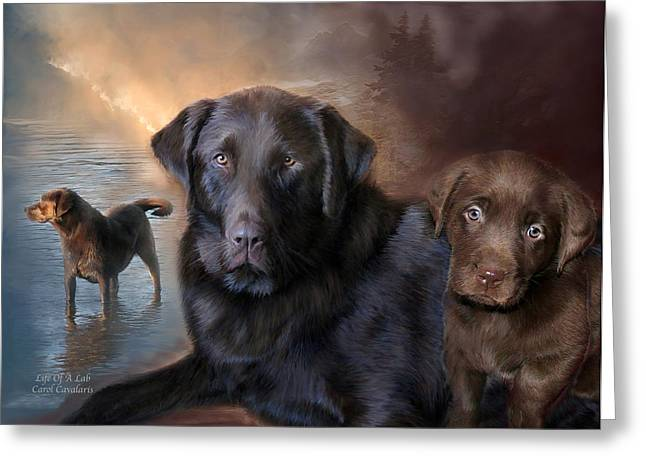 Retriever Prints Mixed Media Greeting Cards - Life Of A Lab Greeting Card by Carol Cavalaris