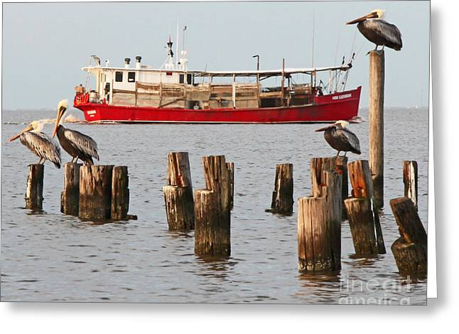 Metal Fish Art Photography Greeting Cards - Life on Lake Ponchartrain Greeting Card by Luana K Perez