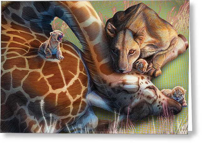 Zebra Colt Greeting Cards - Liger  The Shift Greeting Card by David Starr