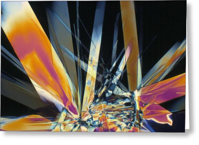 Lm Greeting Cards - Light Micrograph Of Thiamine Crystals Greeting Card by David Parker