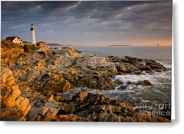 Portland Head Light Greeting Cards - Light on Portland Head Greeting Card by Susan Cole Kelly