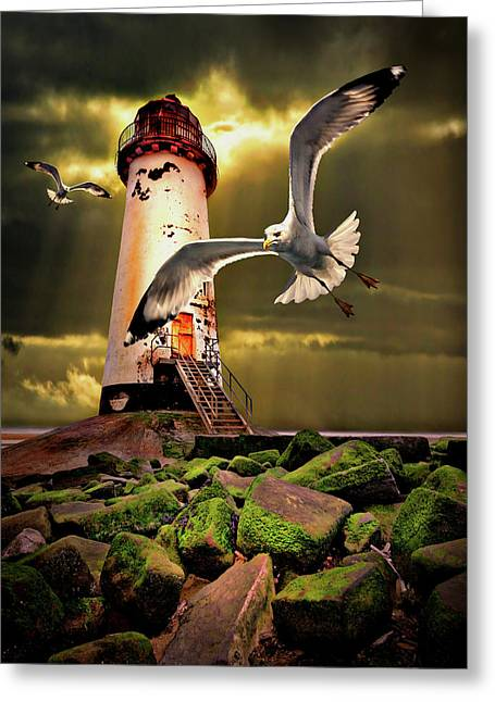 Seagull Flying Greeting Cards - Lighthouse With Seagulls Greeting Card by Meirion Matthias