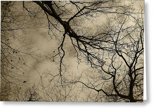 Mohawk Park Greeting Cards - Lightning Branches in Sepia Greeting Card by Corinne Elizabeth Cowherd