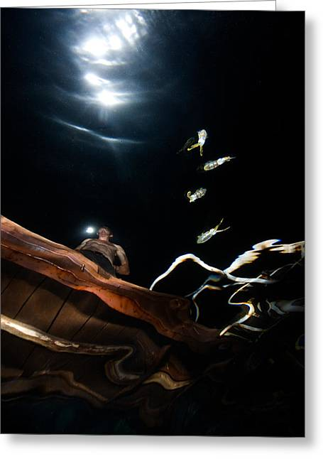 Lightning Photographs Greeting Cards - Lightning Squids Greeting Card by Rico Besserdich
