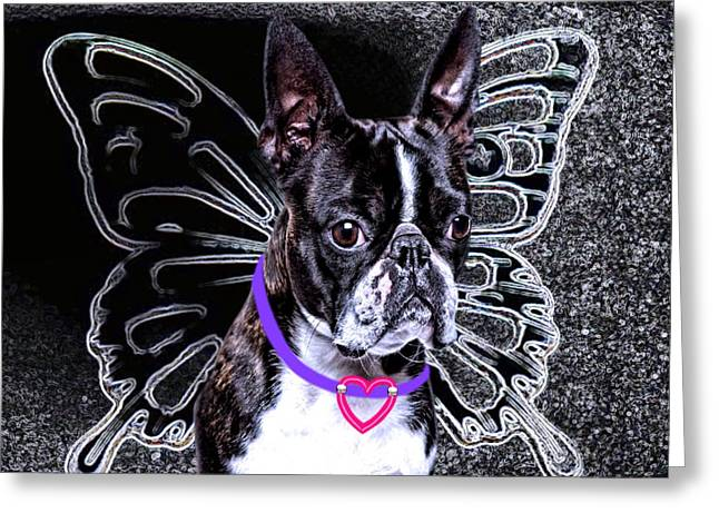 lil Angels Boston Terrier Greeting Card by Tisha McGee