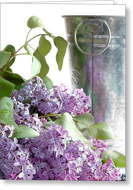 Lilacs Greeting Card by HD Connelly