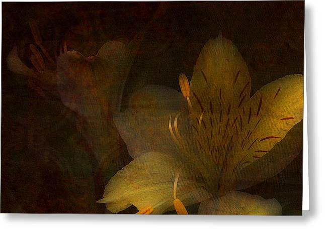 Stamen Digital Art Greeting Cards - Lilies II Greeting Card by Bonnie Bruno