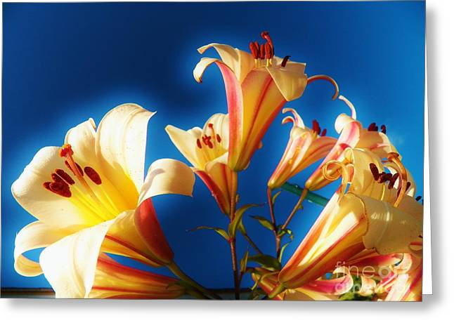 Flowers Against The Sky Greeting Cards - Lillie Landscape Greeting Card by Judy Via-Wolff