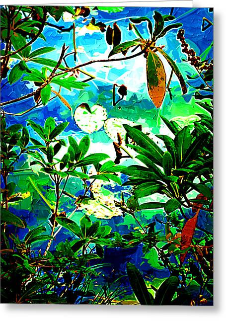 Lilly Pads Digital Art Greeting Cards - Lilly Pods Greeting Card by Dale Stillman