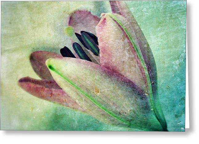 Rusty Metal Greeting Cards - Lily in my Dreams Greeting Card by Marianna Mills