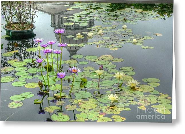 Jefferson Greeting Cards - Lily Pad at the Capitol Greeting Card by David Bearden