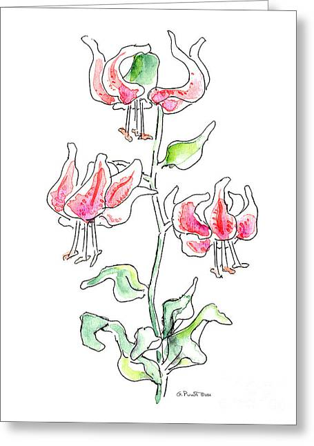 Calla Lily Drawings Greeting Cards - Lily Painting 3 Greeting Card by Gordon Punt
