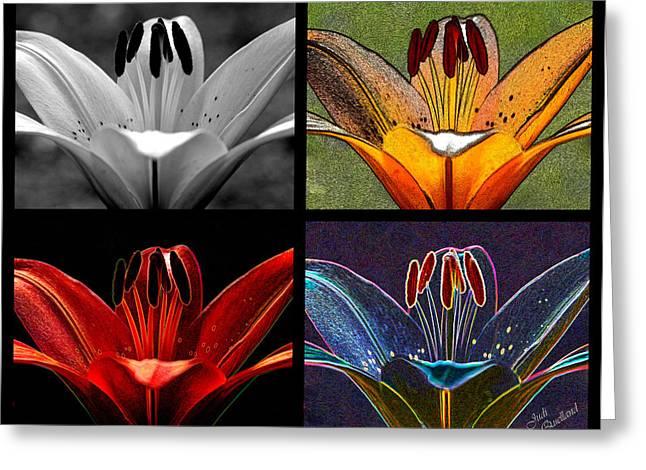 Quartet Greeting Cards - Lily Quartet Greeting Card by Judi Quelland