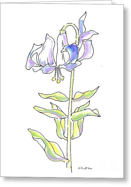 Calla Lily Drawings Greeting Cards - Lily Watercolor Drawing 5 Greeting Card by Gordon Punt