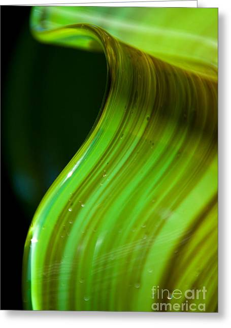 Abstract Print Glass Art Greeting Cards - Lime Curl ll Greeting Card by Dana Kern