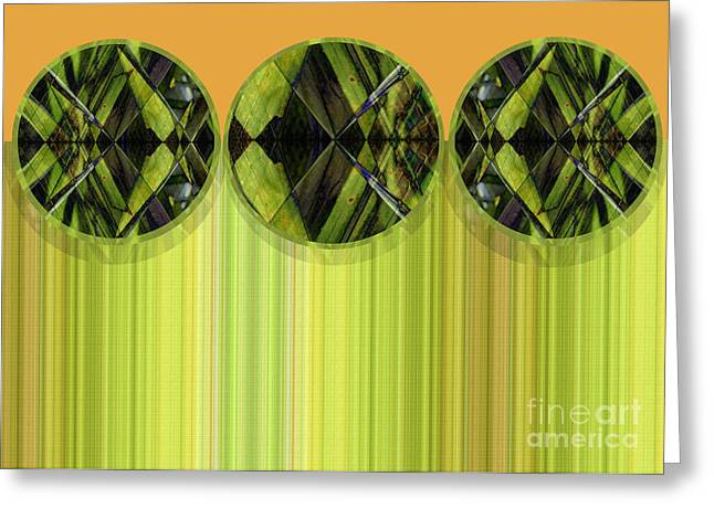 Green And Yellow Abstract Greeting Cards - Lime Delight Greeting Card by Ann Powell