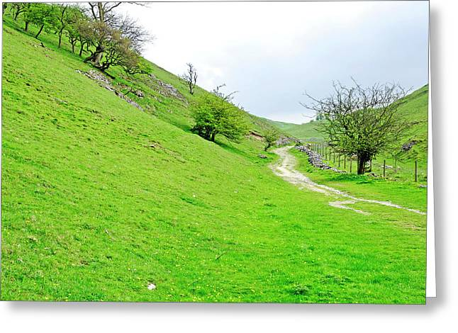 Hills Greeting Cards - Lin Dale Greeting Card by Rod Johnson
