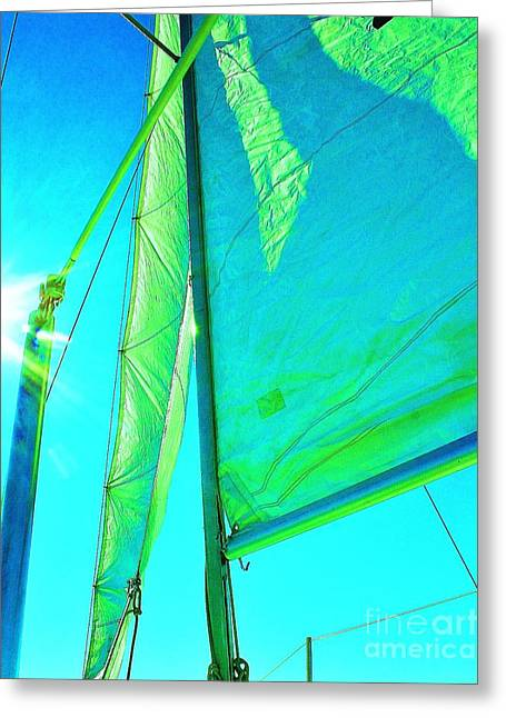 Sailboats In Water Greeting Cards - Lines And Sheets Greeting Card by Julie Lueders