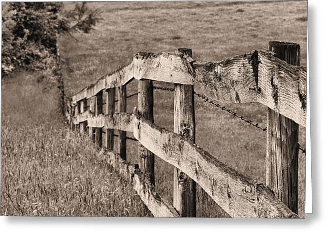 Lines BW Greeting Card by JC Findley
