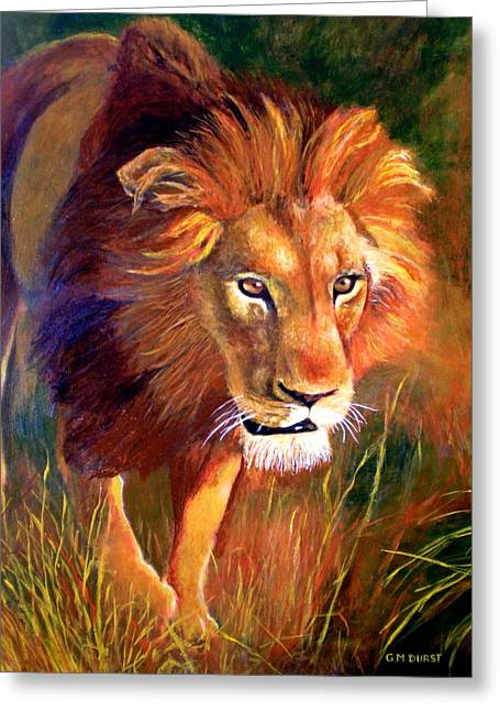 Wildcat Greeting Cards - Lion at Sunset Greeting Card by Michael Durst